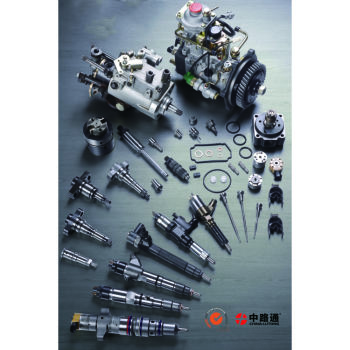 VE Distributor Head,Fuel Injection System Components,Injector Nozzle,Diesel Plunger,Ve Pump Assembly