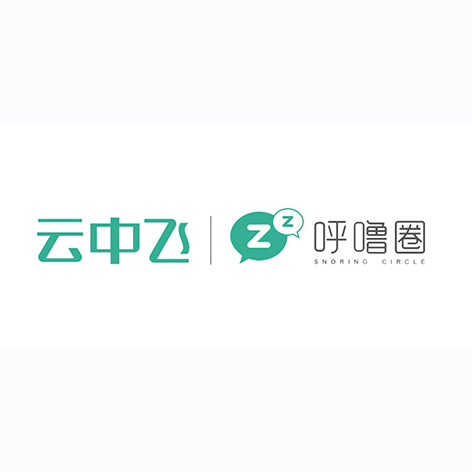 Shenzhen VVFLY Electronics Co,. LTD.