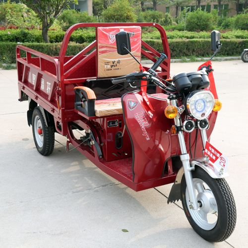 Hybird Tricycle